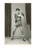 Boxer Posing
