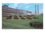 Factory Lawn  Hershey  Pennsylvania
