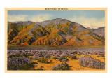 Desert Hills of Nevada