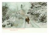 Winter  Horse and Sleigh  Allentown  Pennsylvania