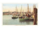 Fishing Boats  Nantucket  Massachusetts