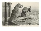 Gargoyles at Notre Dame  Paris