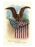 Capitol  Eagle and Flag