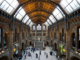 UK  Enlgland  London  South Kensington  Natural History Museum  the Central Hall