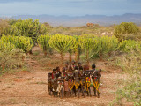 Hamer Dancers  Omo Valley  Ethiopia