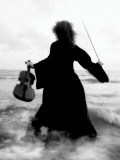 Violinists Series by Helena M Damsel