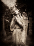 Statue of a Female Angel Praying in Cemetery