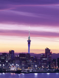 City Skyline / Night View  Auckland  North Island  New Zealand