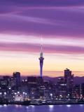 City Skyline / Night View  Auckland  North Island  New Zealand