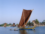 Negombo Beach / Traditional Outrigger Fishing Boats  Negombo  Sri Lanka