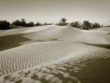 Sahara Desert  Douz Tunisia