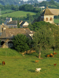 Junac  Montsalvy  Auvergne  France