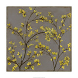 Forsythia II