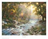 River Of Light Reproduction d'art par Larry Dyke