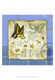 Papillon Plaid I