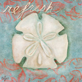 Sand Dollar (Refresh)