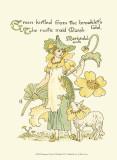 Shakespeare's Garden IX (Marigold)