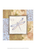 Collaged Dragonflies I