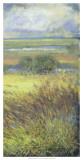 Shimmering Marsh II