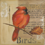 Red Love Birds II