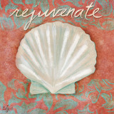 Shell (Rejuvenate)