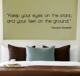 Eyes on the Stars - Theodore Roosevelt