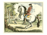 Equestrian Training II