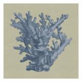 Chambray Coral I Reproduction d'art par Vision Studio