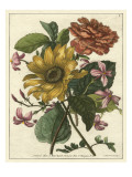 Floral Posy I