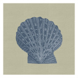 Chambray Shells IV