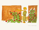 Petit Prince et le Jardin de Roses