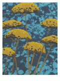 Non-Embellished Golden Yarrow II