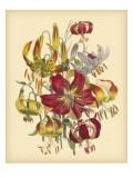 Garden Bouquet III