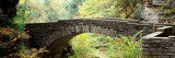 Arch Bridge in a Forest  Robert H Treman State Park  Ithaca  Tompkins County  Finger Lakes