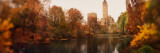 Park with Buildings in the Background  Central Park  Manhattan  New York City  New York State  USA