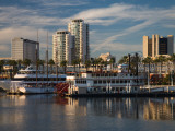 Boats on a Marina  Shoreline Village  Long Beach  Los Angeles County  California  USA
