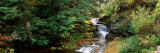 Waterfall in a Forest  Robert H Treman State Park  Ithaca  Tompkins County  Finger Lakes