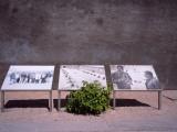 Photos of Nelson Mandela And Walter Sisulu  Robben Island Prison Museum  Robben Island