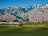 Golf Course with Mountain Range  Desert Princess Country Club  Palm Springs