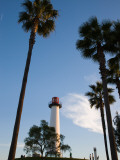Low Angle View of a Lighthouse  Shoreline Village  Long Beach  Los Angeles County  California  USA