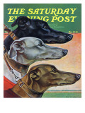 &quot;Greyhounds &quot; Saturday Evening Post Cover  March 29  1941