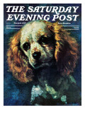 """Cocker Spaniel "" Saturday Evening Post Cover  March 1  1975"
