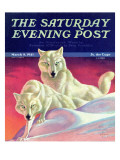 """White Wolves "" Saturday Evening Post Cover  March 8  1941"