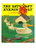 &quot;Ducks in a Flood &quot; Saturday Evening Post Cover  April 5  1941