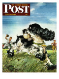 """Butch and Baseball "" Saturday Evening Post Cover  June 18  1949"
