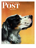 """Gordon Setter "" Saturday Evening Post Cover  October 17  1942"