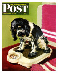 &quot;Butch Weighs In &quot; Saturday Evening Post Cover  September 1  1945
