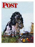 &quot;Butch Fishes for a Shoe &quot; Saturday Evening Post Cover  August 21  1948
