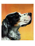 """Gordon Setter "" October 17  1942"