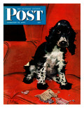 """Butch Ate the Coupons "" Saturday Evening Post Cover  February 19  1944"